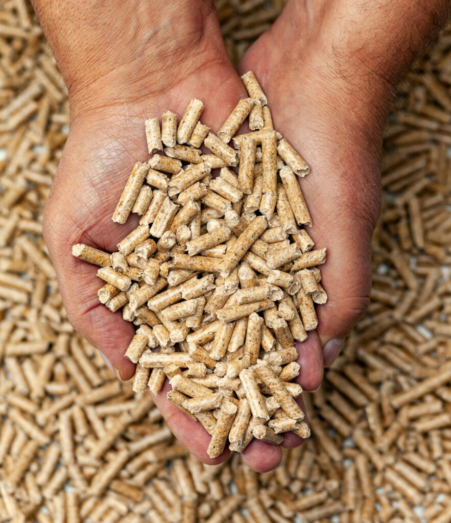Wood pellets in hands.
